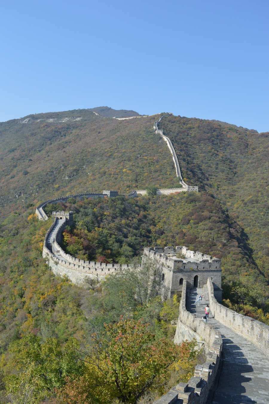 The Great Wall of China (Mutianyu Section)
