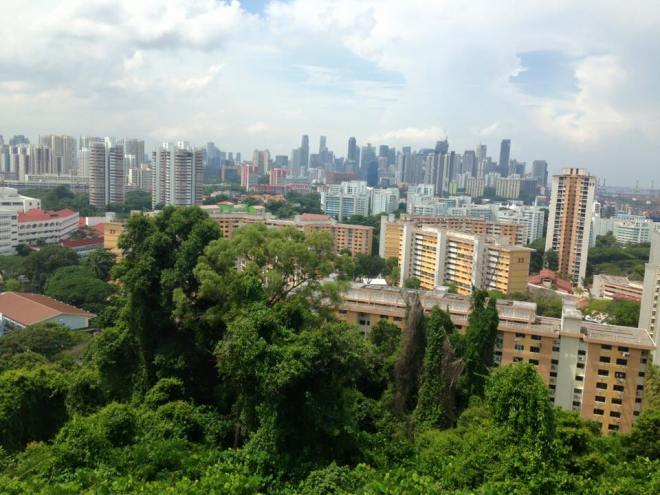 One of the views from the Southern Ridges Trail