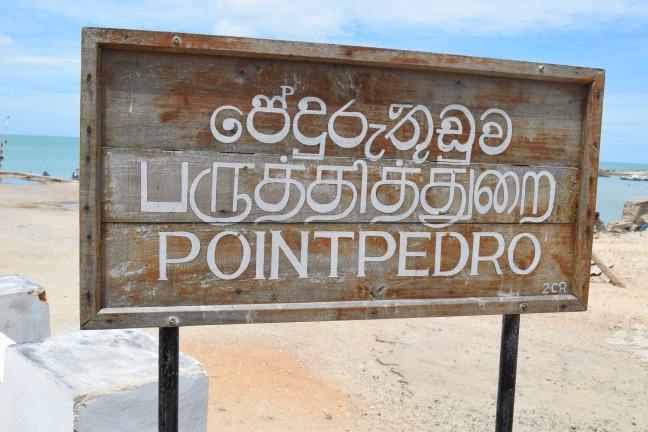 Point Pedro